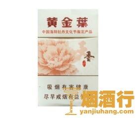 黄金叶(天香.洛阳牡丹文化节)